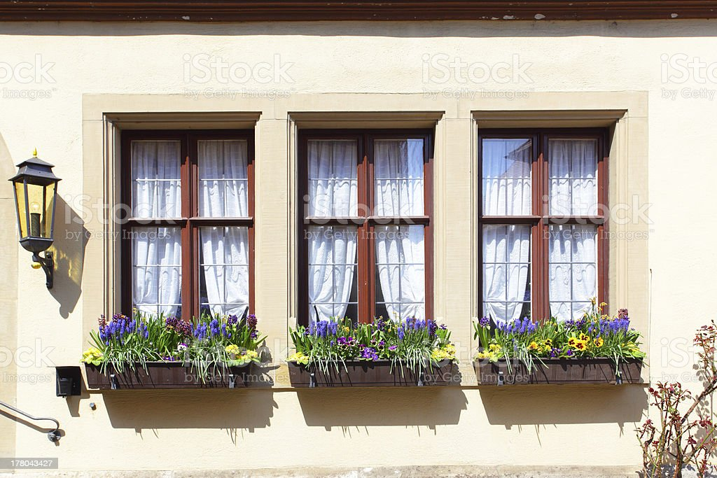Windows with flowers royalty-free stock photo