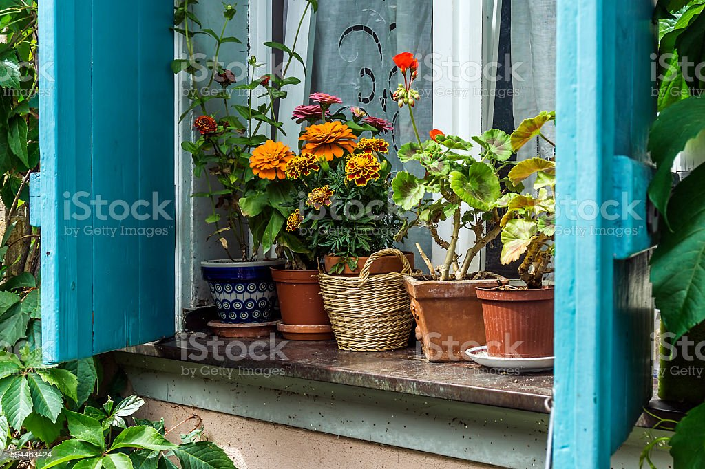 Windowsill stock photo