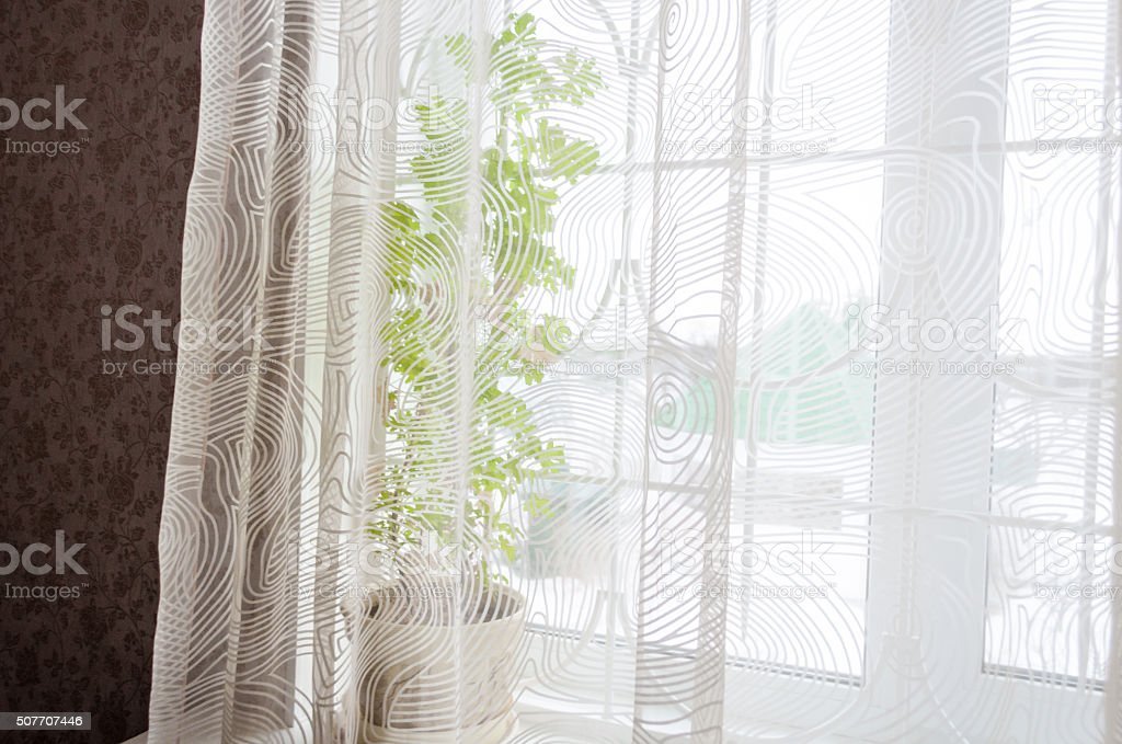 windowsill winter stock photo