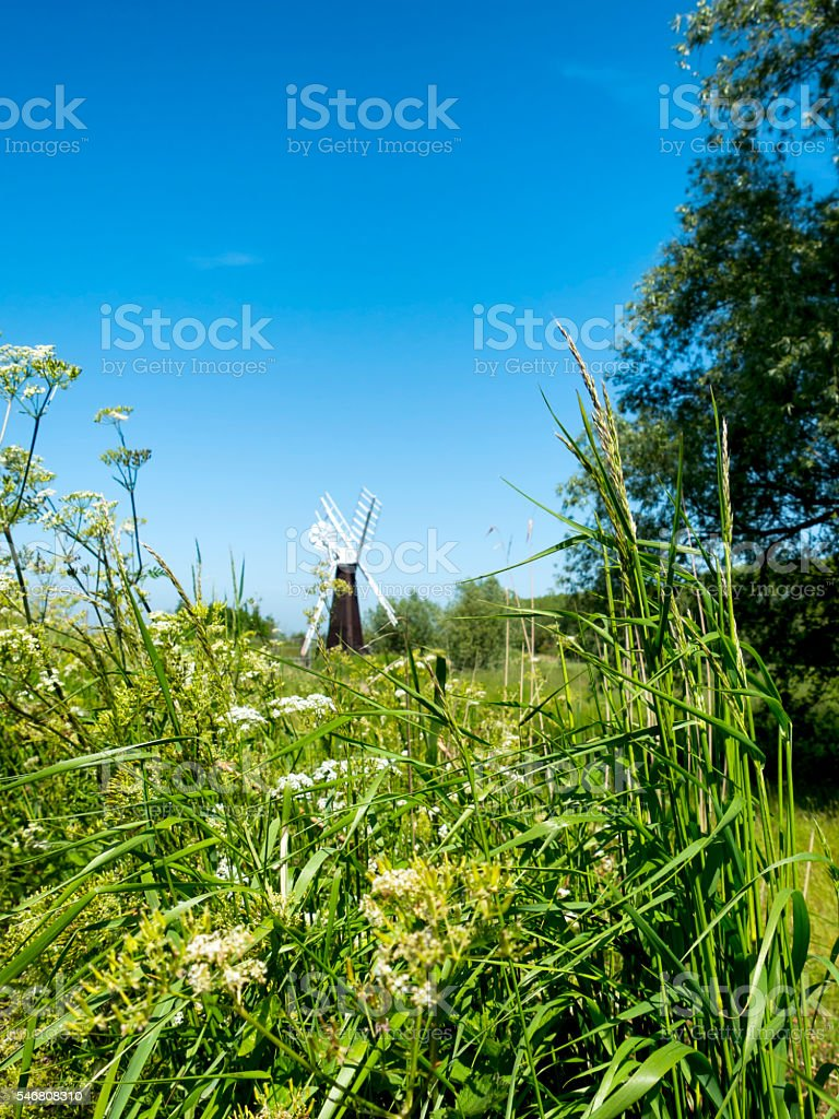 Windpump in the water meadows at St Olaves stock photo
