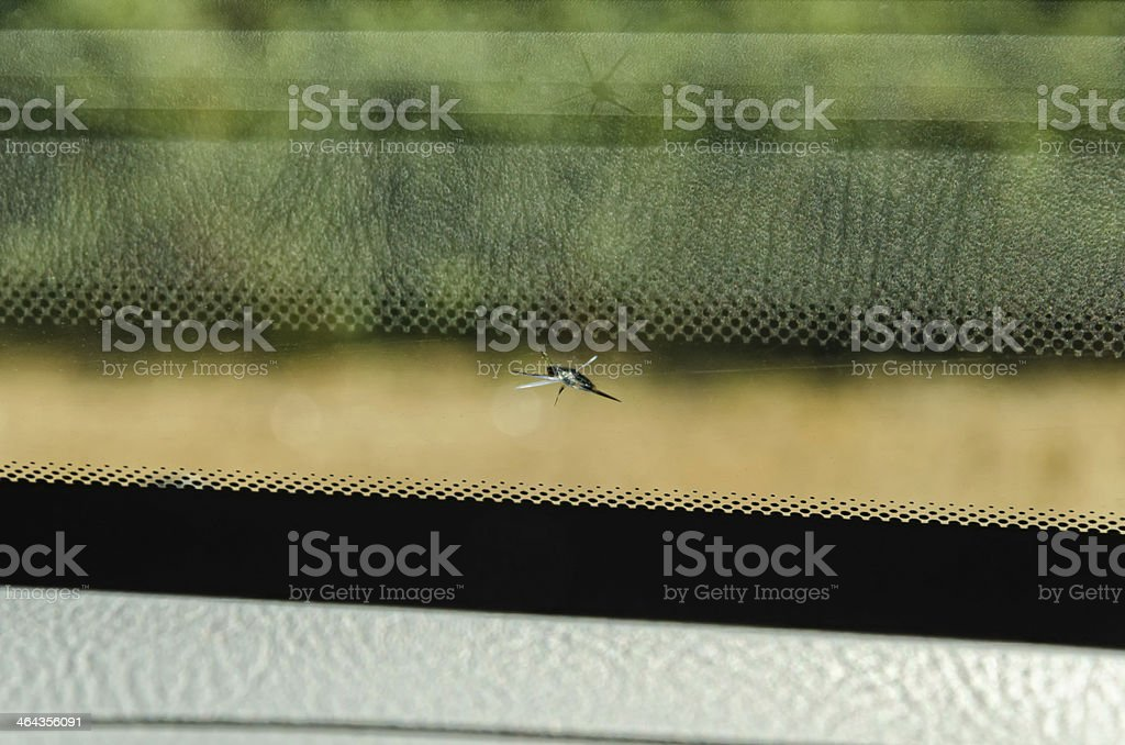 windscreen was chipped by a stone royalty-free stock photo