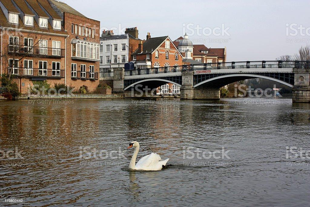 Windsor and Eton Riverside stock photo