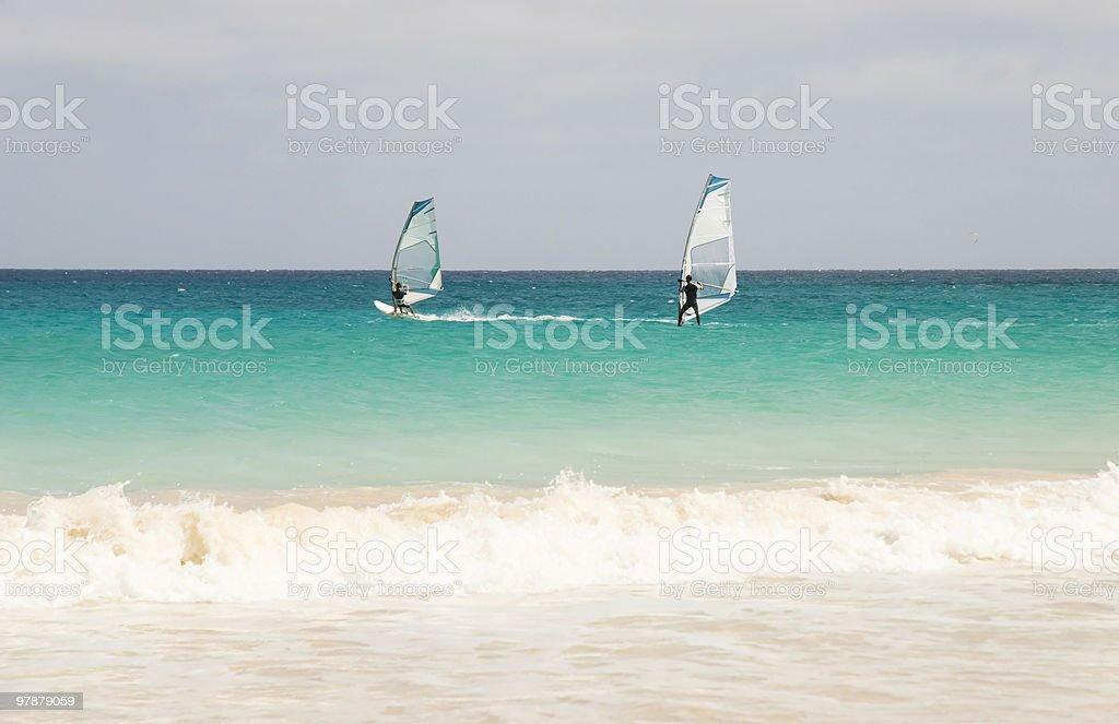 Windsurfers racing. stock photo