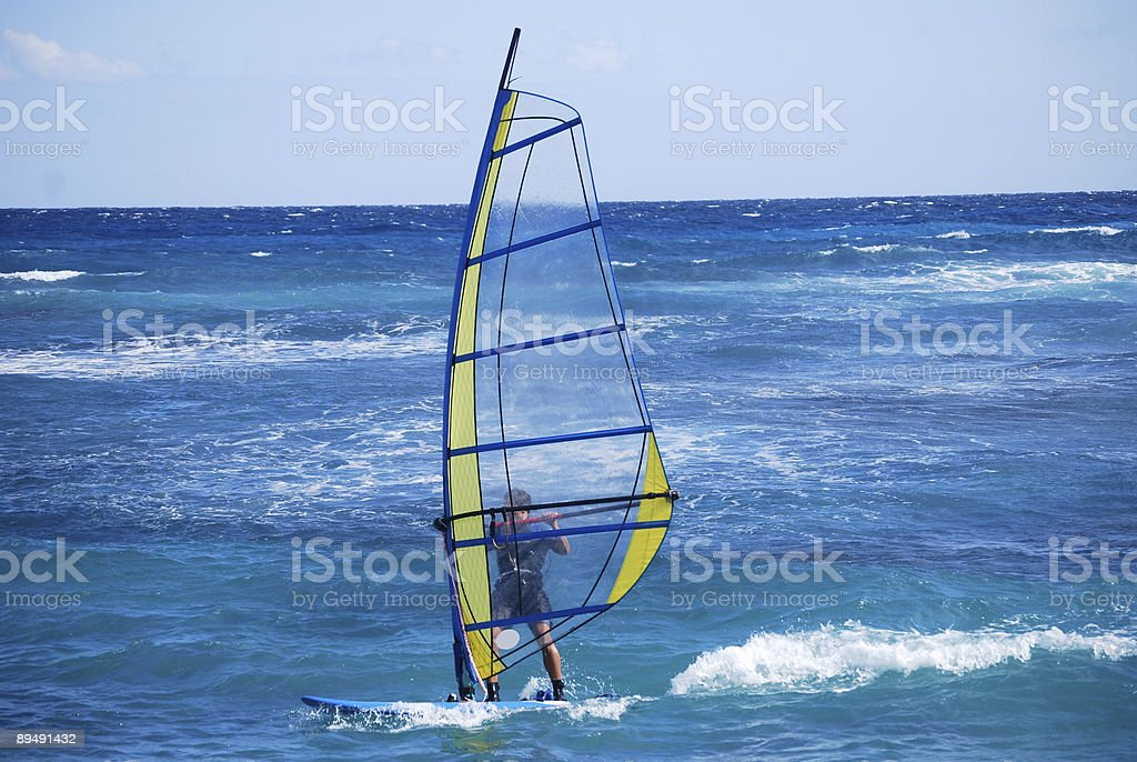 Windsurfing at a Caribbean Resort royalty-free stock photo