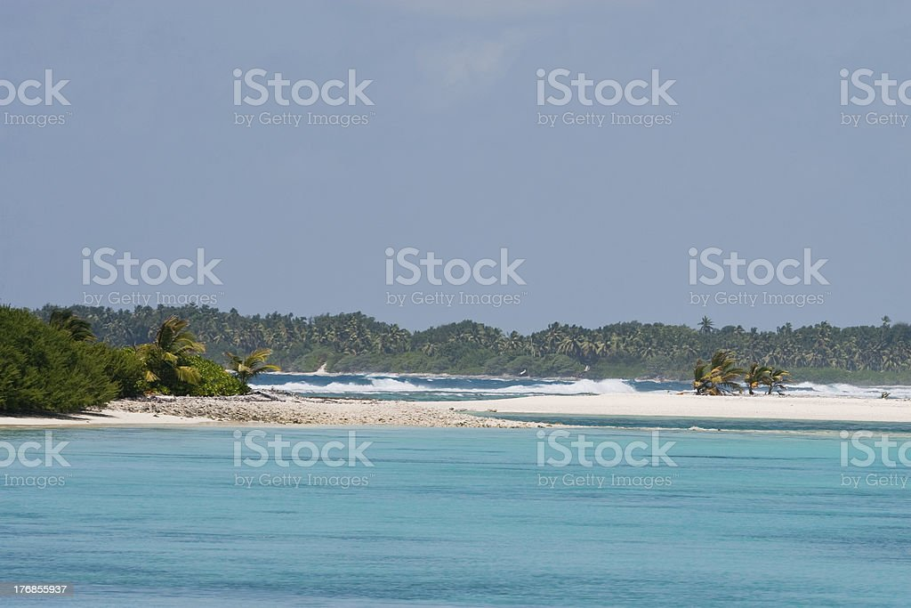 Windswept Beach royalty-free stock photo