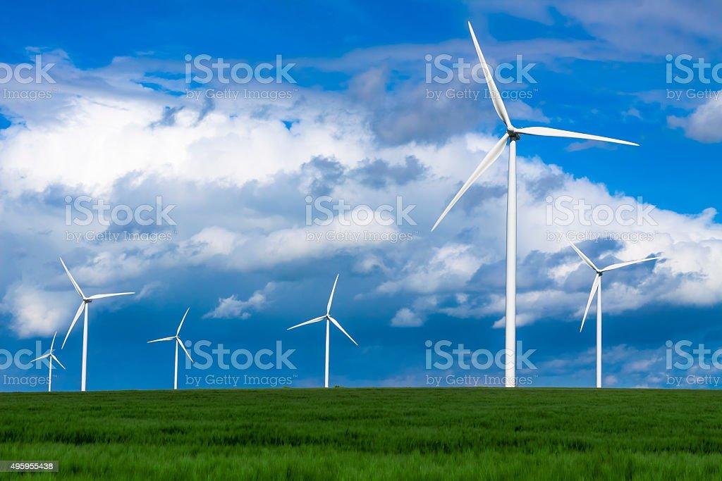 Windturbines in green field stock photo