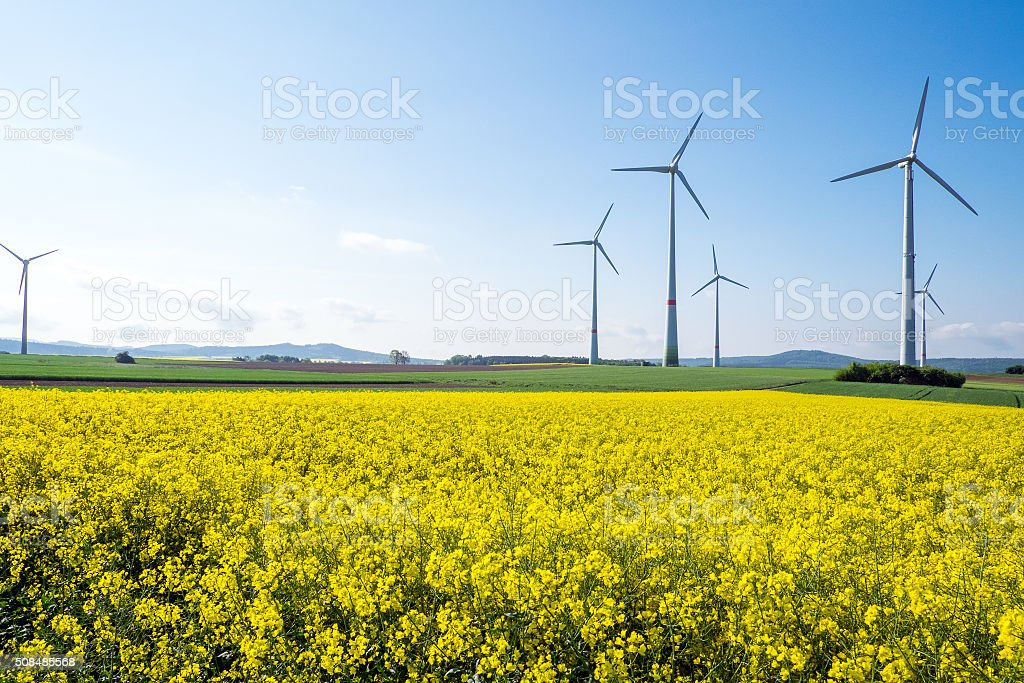 Windwheels and rapeseed in Germany stock photo