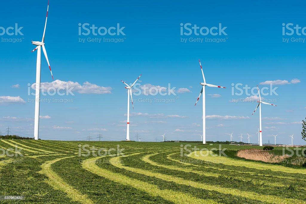 Windwheels in a mowed field stock photo