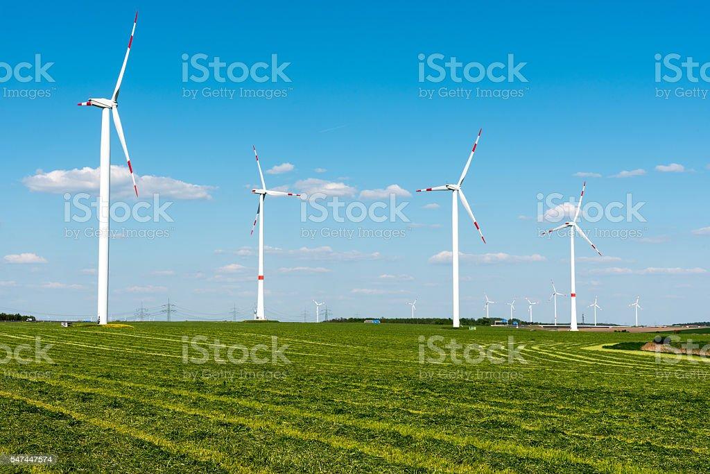 Windwheels in the fields stock photo
