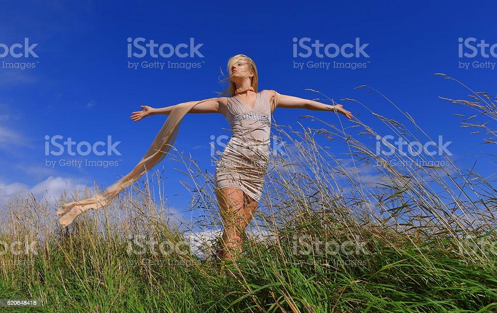 Windy Fields one stock photo