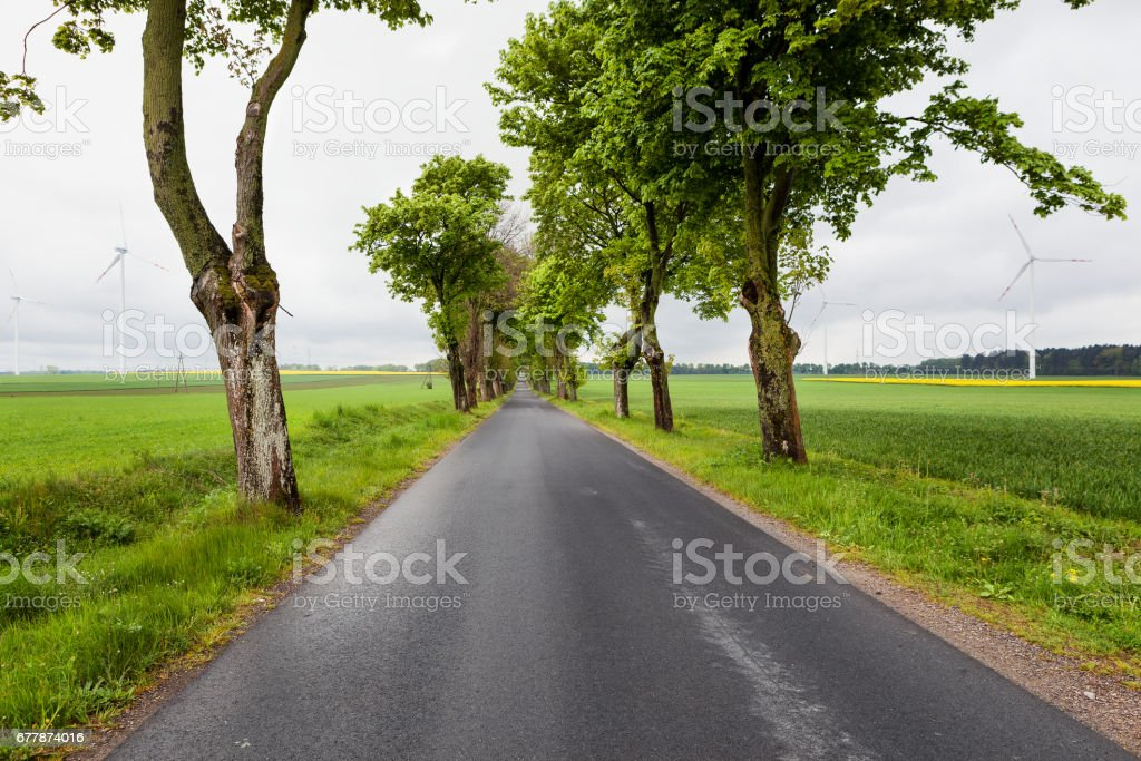 Windy Road stock photo