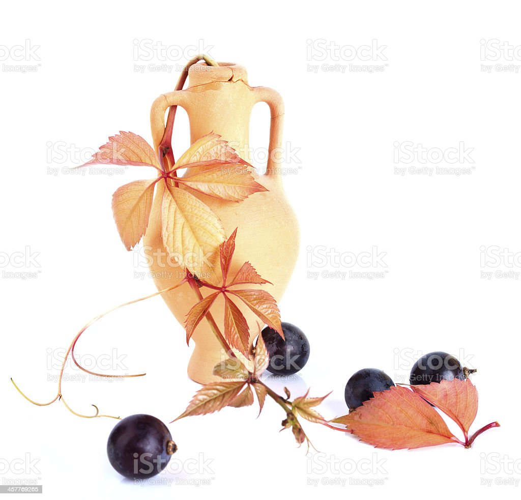 Wine amphora with the vine branch and grapes royalty-free stock photo