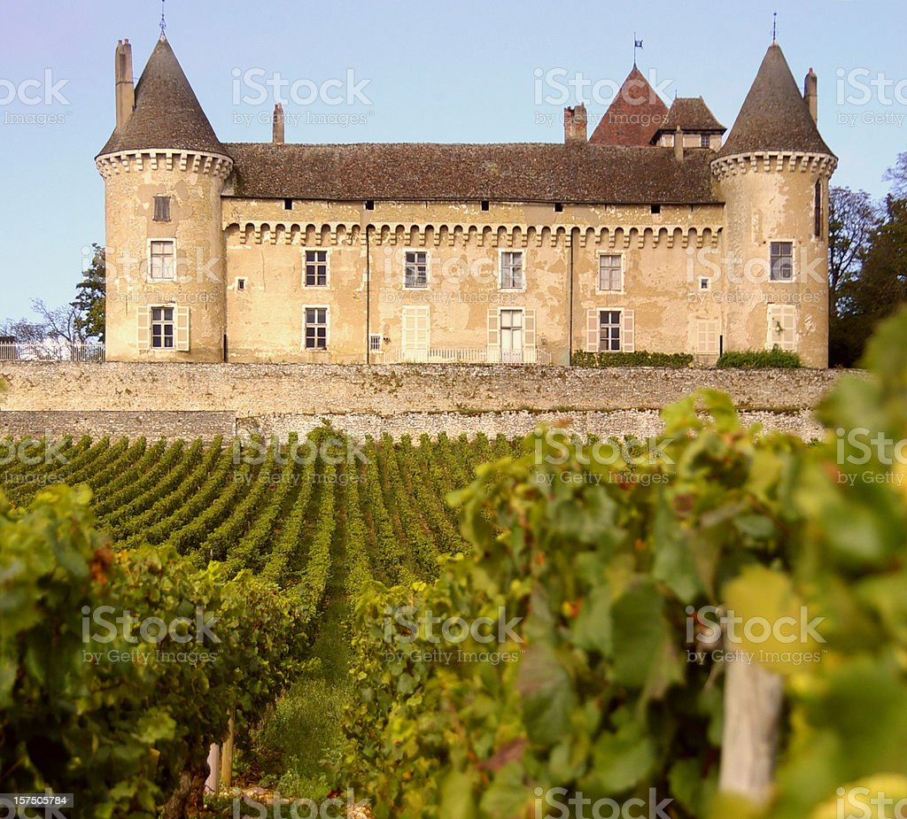 Wine and Castle stock photo