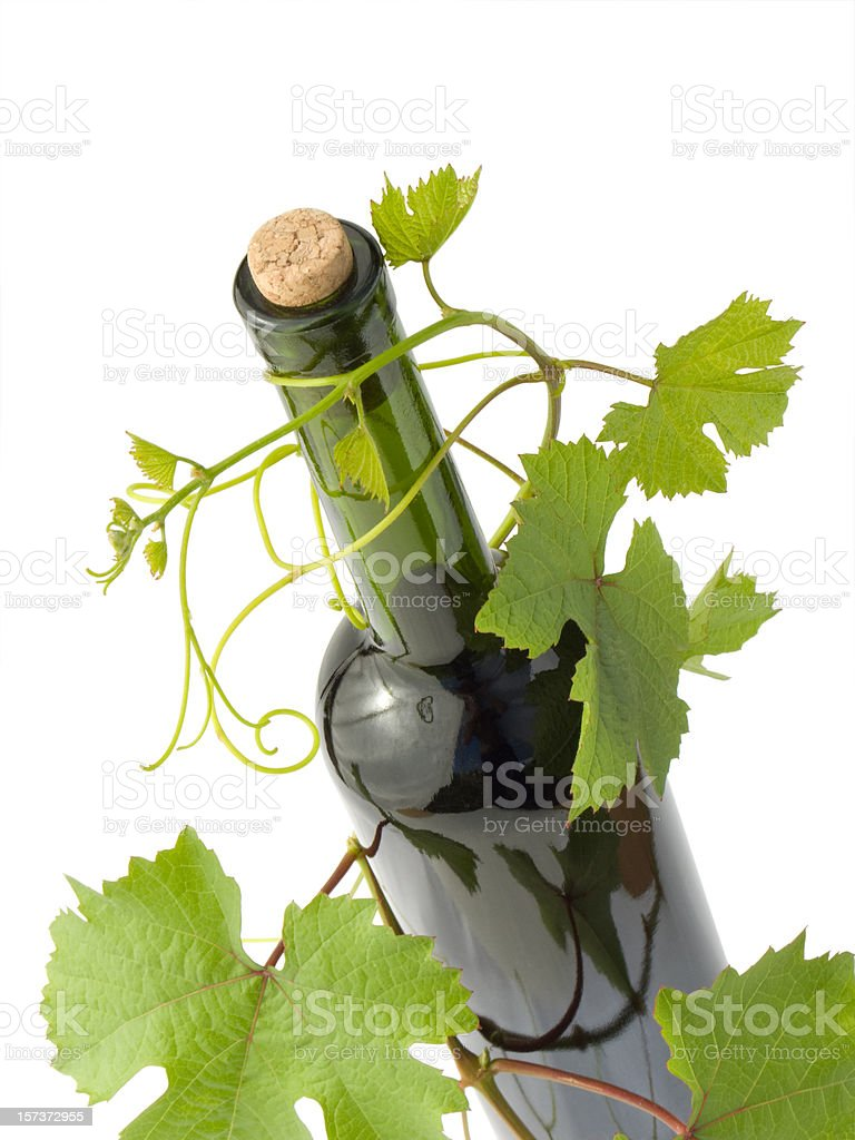 wine and grape branch stock photo