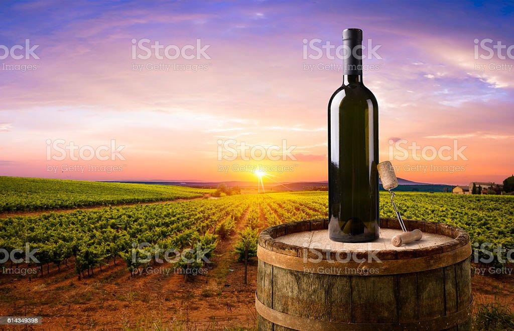 Wine and vineyard in Tuscany sunset. Italy stock photo
