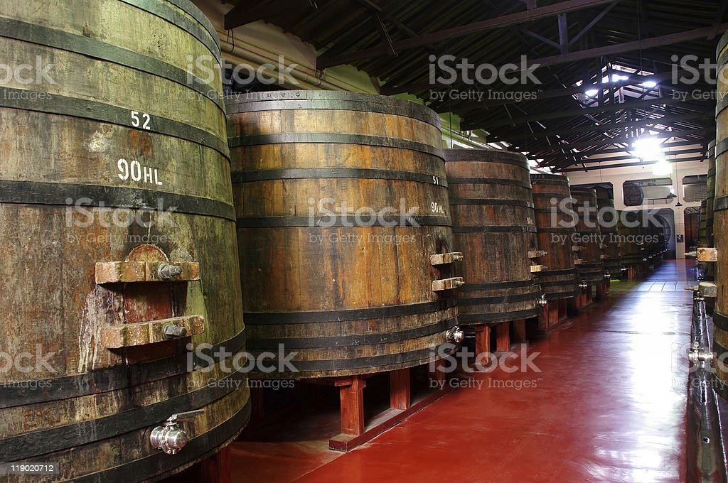 Wine barrels in a Argentinian winery. royalty-free stock photo