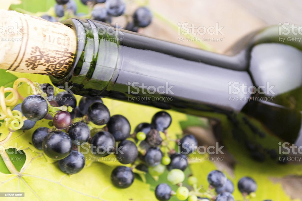 wine bottle and bunch of grapes royalty-free stock photo