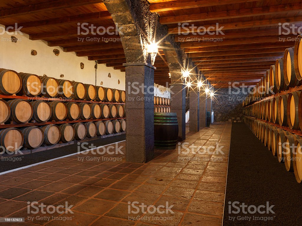 Wine cellar full of barrels at a Bodega on Lanzarote stock photo