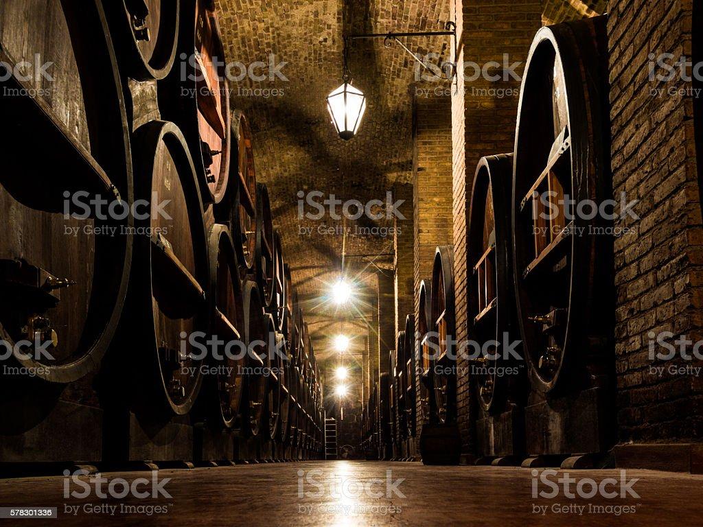 Wine Cellar in Mendoza, Argentina stock photo