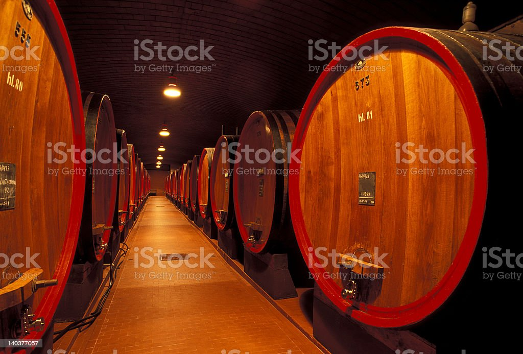 Wine Cellar in Valtellina royalty-free stock photo