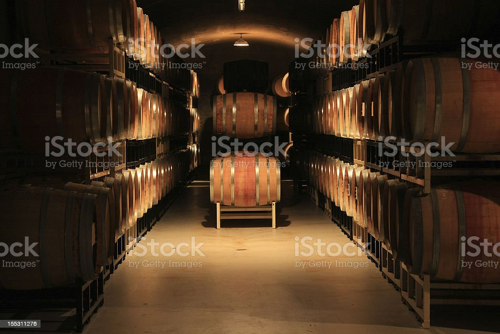 A wine cellar with dozens and dozens of kegs on shelves royalty-free stock photo