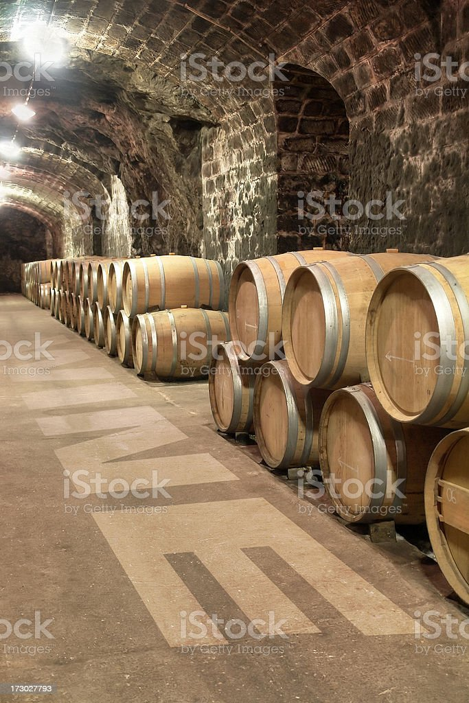 Wine cellar with group of barrels stock photo