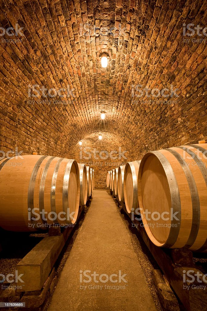 Wine Cellar with large barrels stock photo