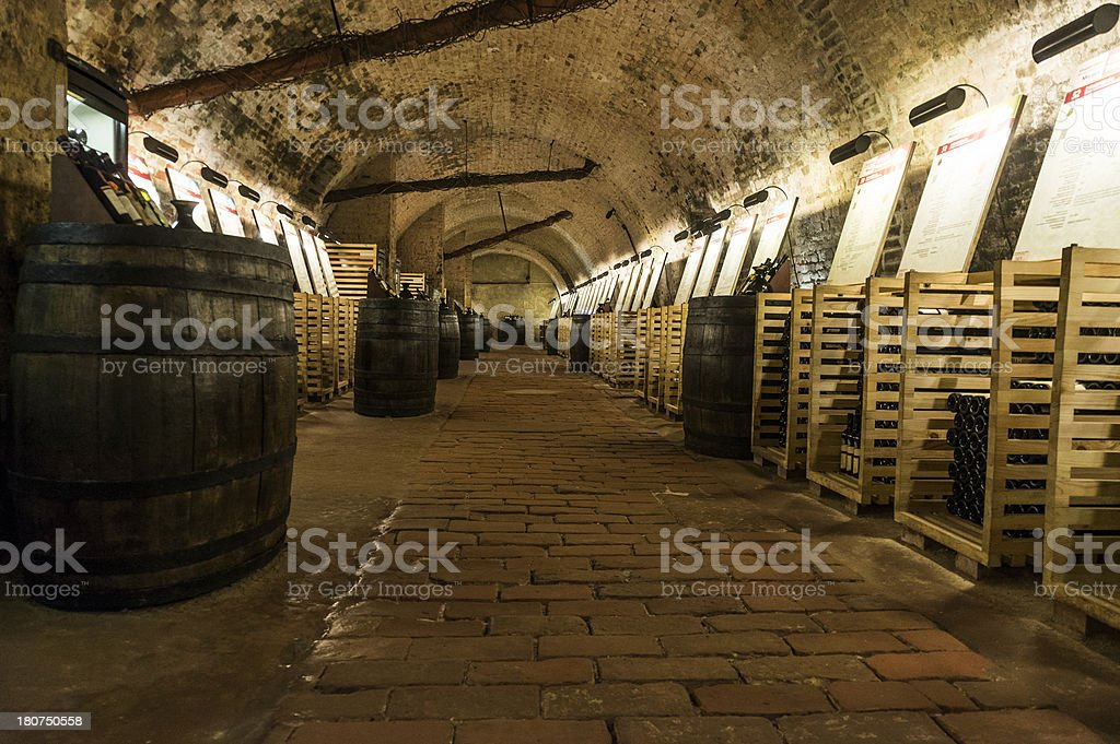 Wine cellar with thousands of bottles and barrels stock photo