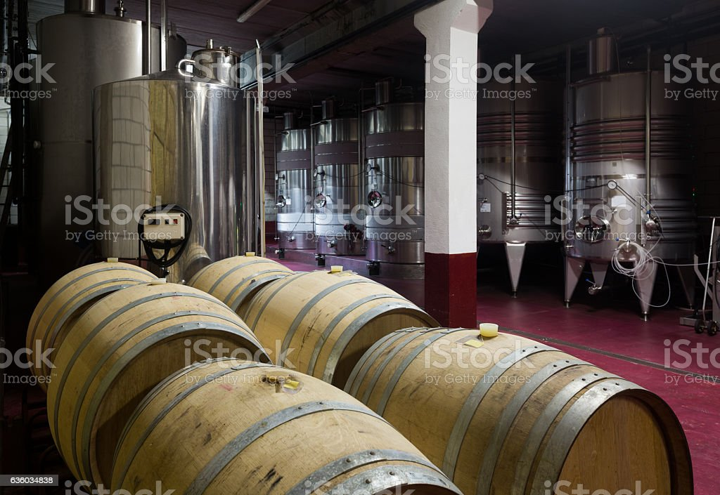 wine cellar with  wooden and stell barrels stock photo