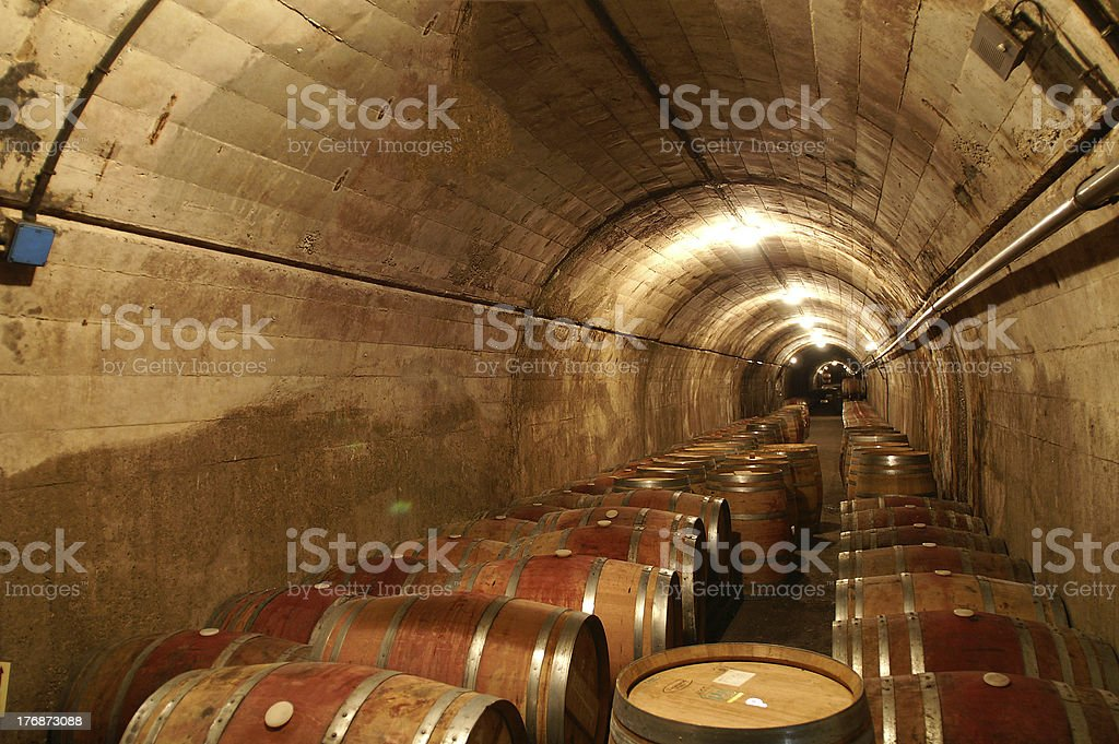 Wine celler with casks lined up royalty-free stock photo