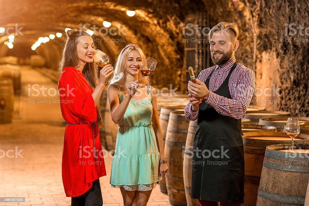 Wine degustation in the cellar stock photo