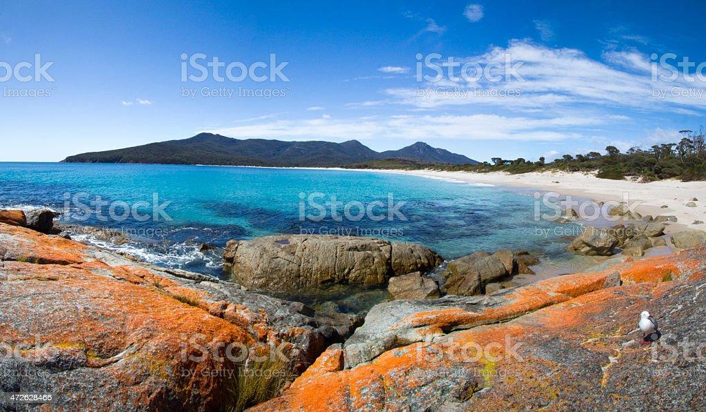 Wine Glass Bay Tasmania. stock photo