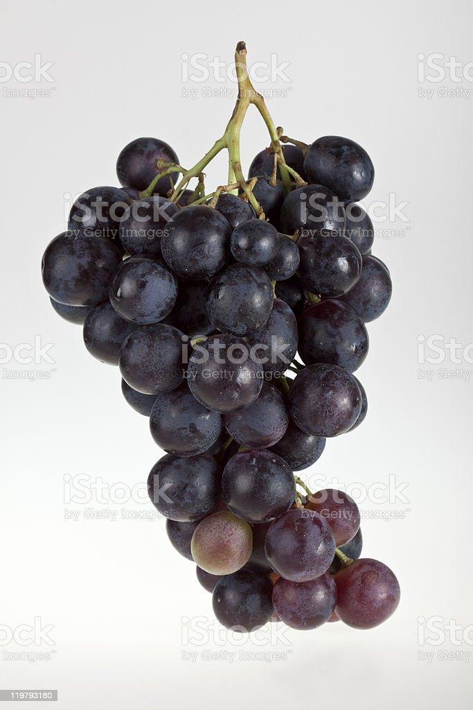 Uvas para vinho foto de stock royalty-free