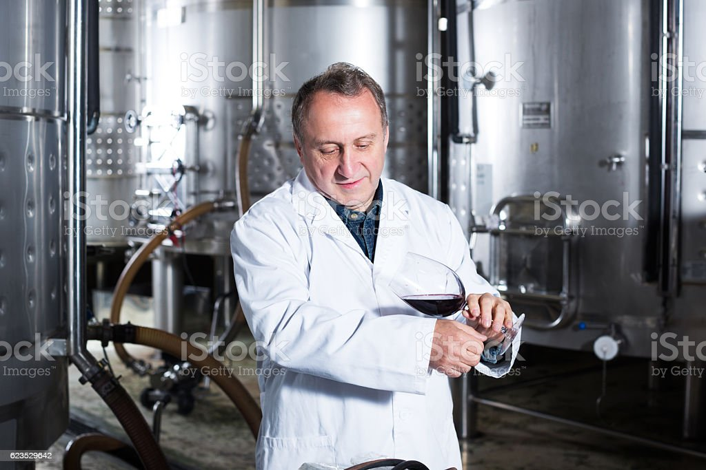 Positive elderly wine maker controls quality of wine at winery