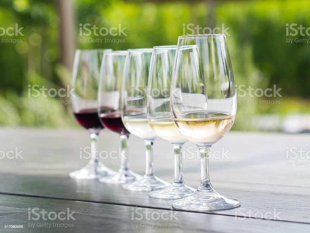Wine tasting in Stellenbosch stock photo