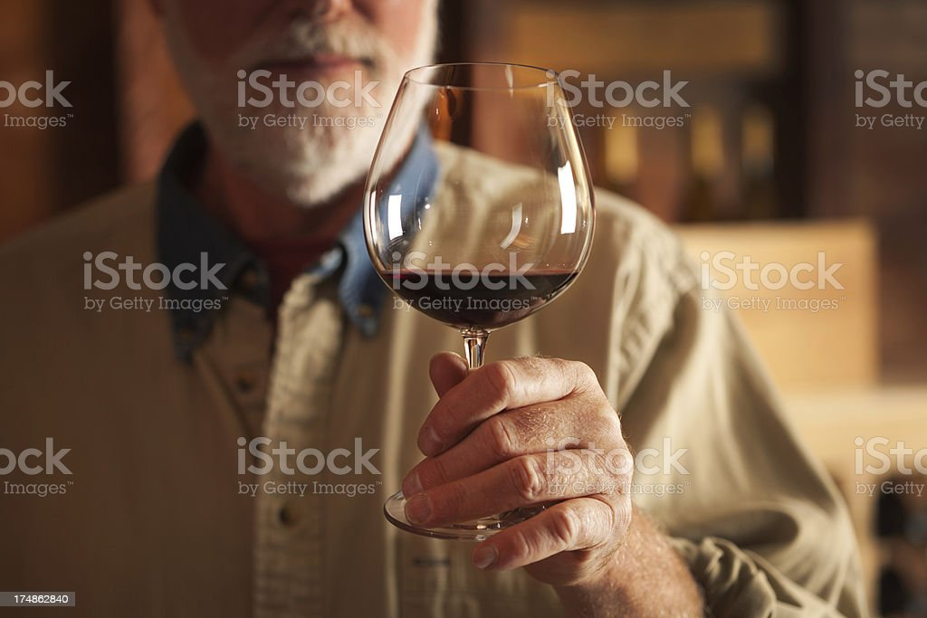 Wine Tasting in the Cellar Horizontal royalty-free stock photo