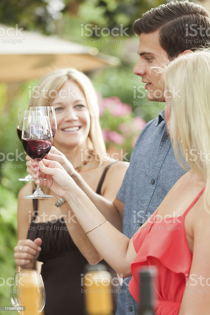 Wine Tasting Outdoor in Winery Vieyard Vt royalty-free stock photo