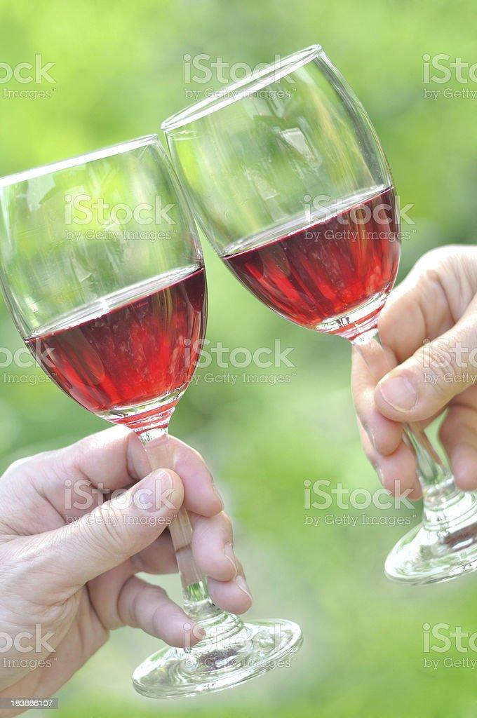 Wine Toasting royalty-free stock photo