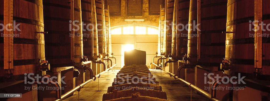 Winecellar stock photo