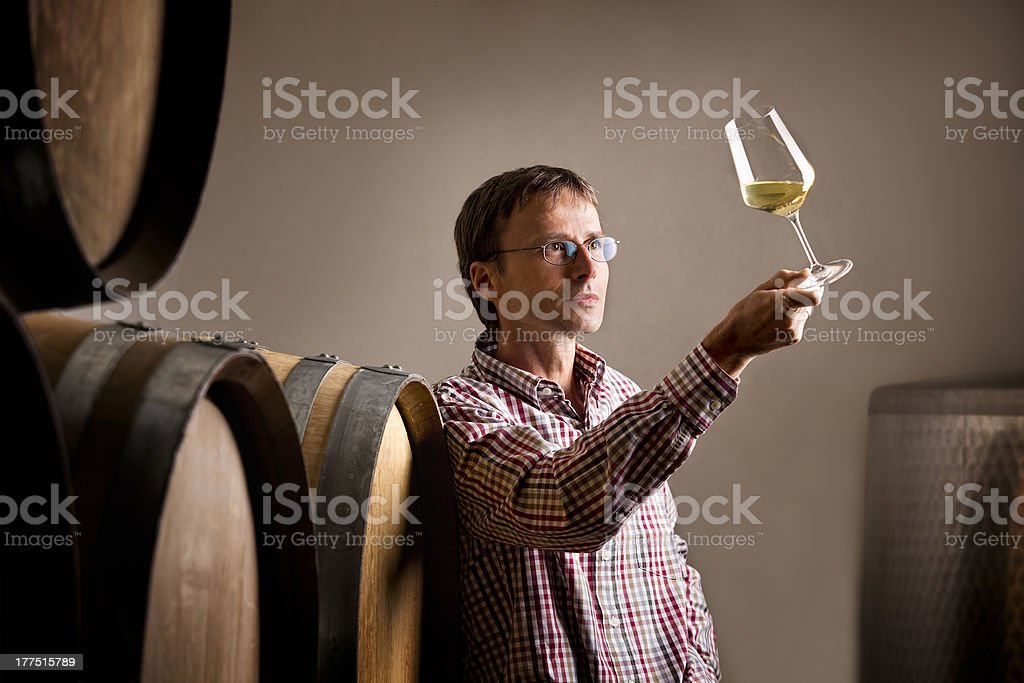 Winemaker analyzing a glass of white wine in cellar. stock photo