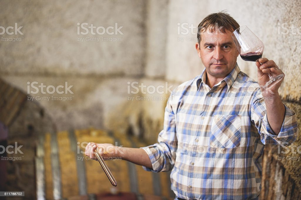 Winemaker Checking Red Wine in Glass in Wine Cellar stock photo