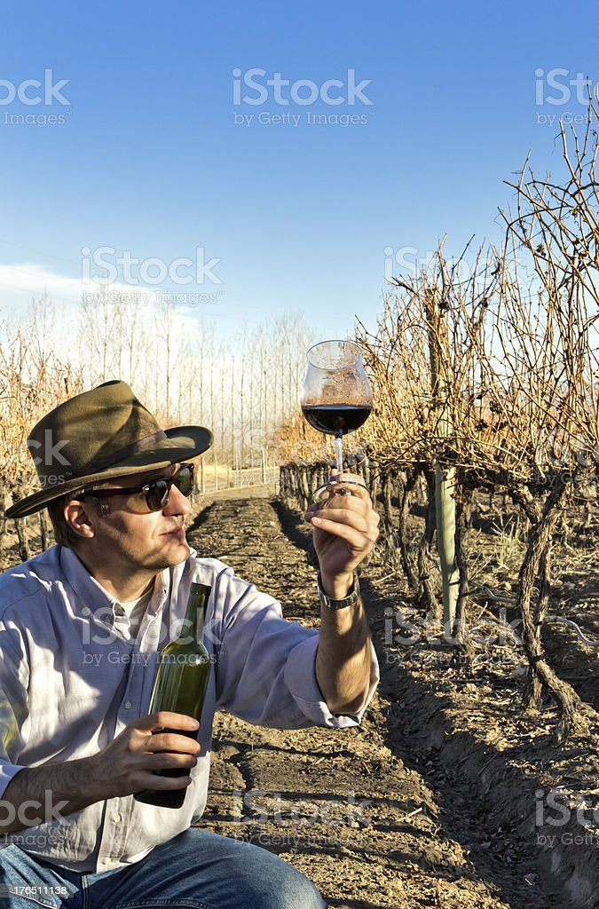 Winemaker checking wine royalty-free stock photo