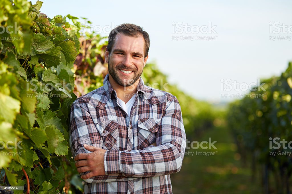 Winemaker in vineyard stock photo
