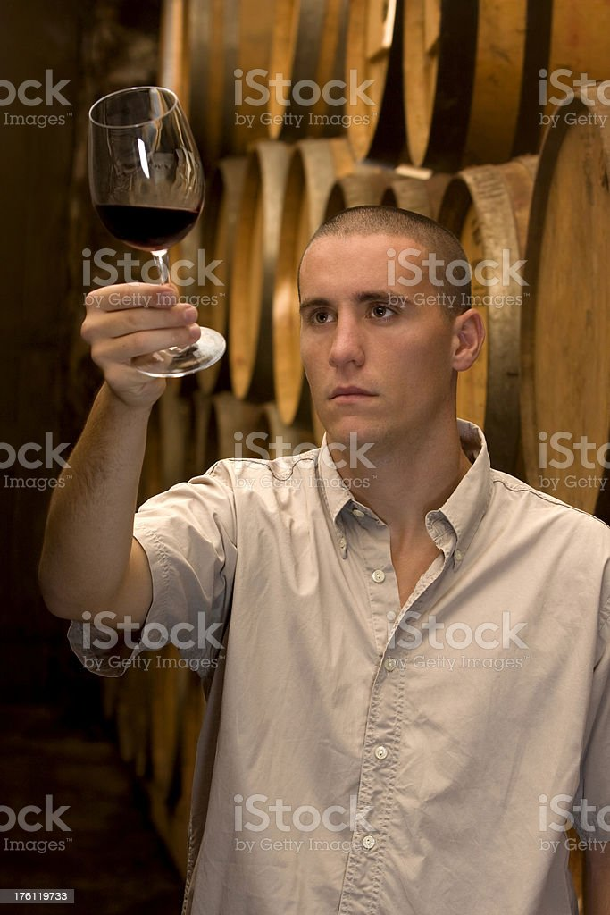 Winemaker inspecting wine at the cellar royalty-free stock photo