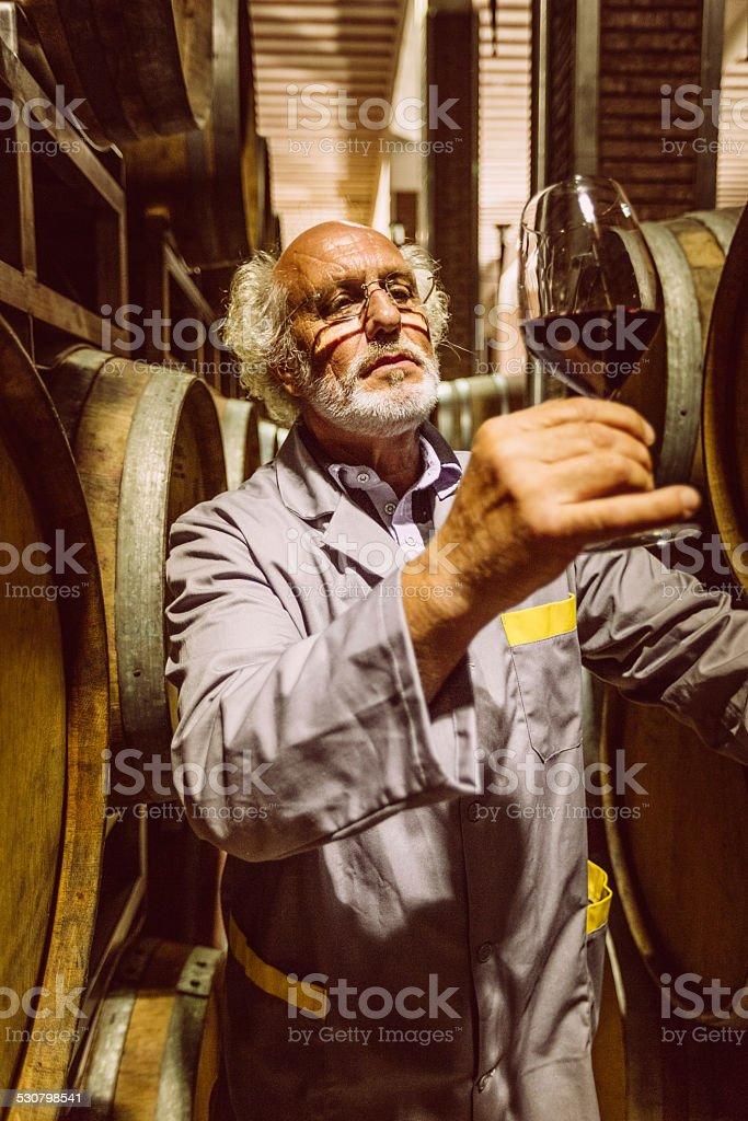 Winemaker man tasting wine in cellar stock photo