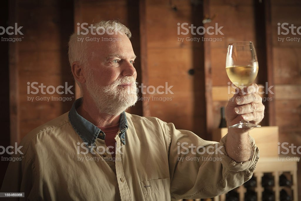Winemaker Studying and Tasting the White Wine in Cellar Hz royalty-free stock photo