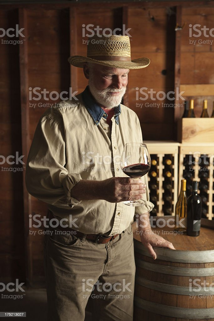Winemaker Studying and Tasting Wine in the Cellar Vt royalty-free stock photo