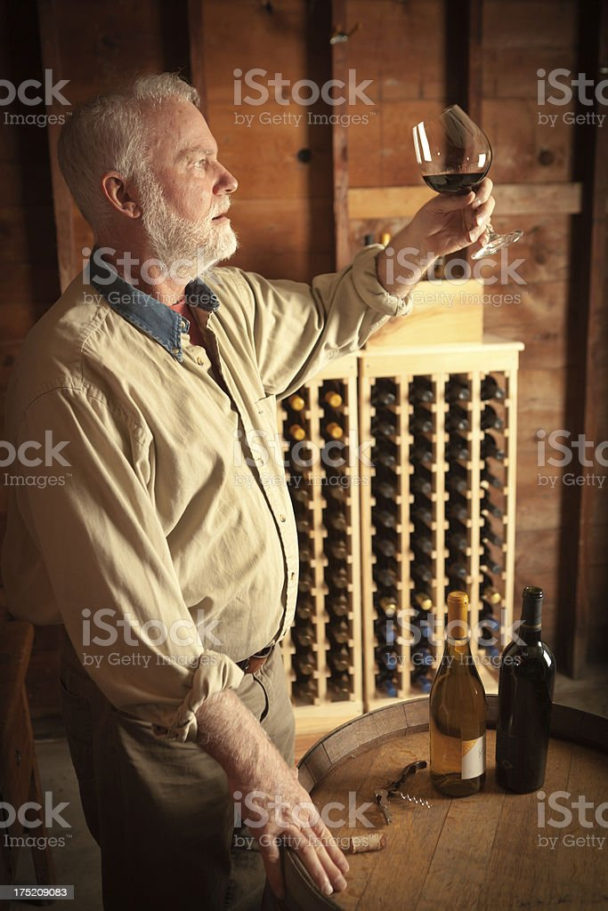 Winemaker Studying Bouquet of the Red Wine in Cellar Vt royalty-free stock photo