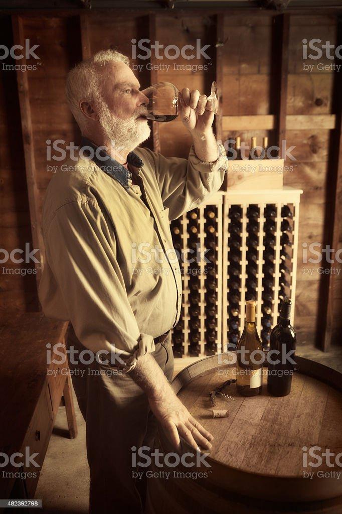 Winemaker Taster Tasting Glass of Red Wine in Wine Cellar stock photo