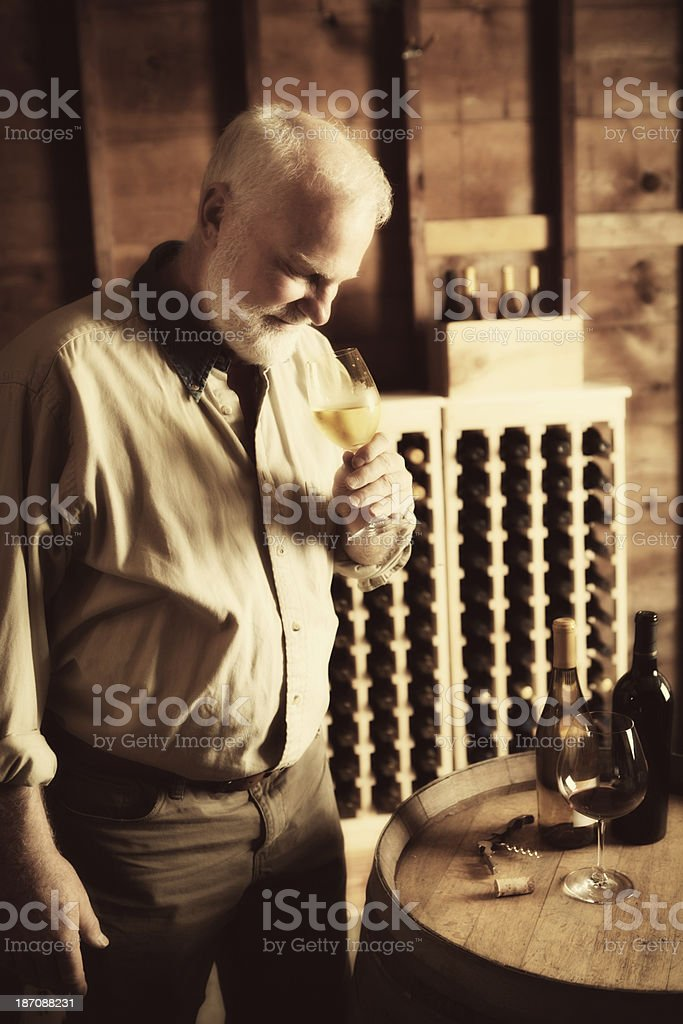 Winemaker Tasting and Studying His Wine in Cellar Vertical royalty-free stock photo